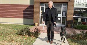 Major, perro de Biden