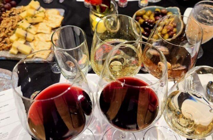 Ofrecen cata de los vinos más interesantes del mundo